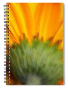 The Backside Spiral Notebook