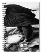 The Bald Eagle Spiral Notebook