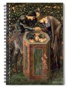 The Baleful Head Spiral Notebook