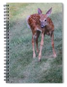 The Bambi Stance Spiral Notebook