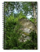 The Base Of Beacon Rock  Spiral Notebook