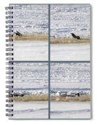 The Bath Of A Magpie Spiral Notebook