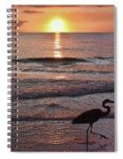 The Beachcomber Shuffle Spiral Notebook