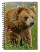 The Bear 1 Dry Brushed Spiral Notebook