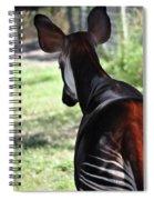 The Beautiful Okapi 02 Spiral Notebook