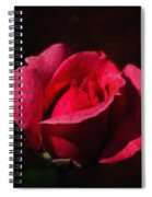 The Beauty In The Garden Of The Neighbor Spiral Notebook
