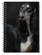 The Beautiful Saluki 01 Spiral Notebook