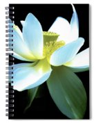 The Beauty Of A Lotus Spiral Notebook