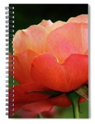 The Beauty Of A Rose Spiral Notebook