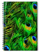 The Beauty Of Color Spiral Notebook