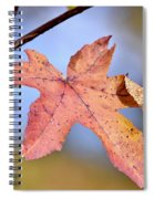 The Beauty Of Fall Spiral Notebook