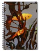 The Beauty Of Goldfish Spiral Notebook