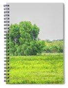 The Beauty Of Santa Ana Spiral Notebook
