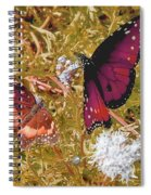 The Beauty Of Sharing - Gold Spiral Notebook