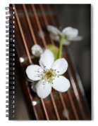 The Beauty Of Strings Spiral Notebook