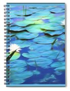 The Beauty Of Sunshine Spiral Notebook