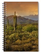 The Beauty Of The Sonoran Desert  Spiral Notebook