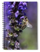 The Bee Hover Spiral Notebook