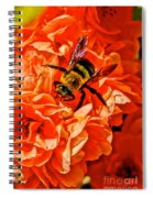 The Bee And The Flower Spiral Notebook
