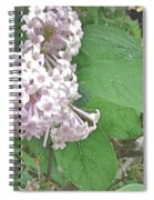 The Bee Landing Spiral Notebook