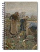 The Beet Harvest Spiral Notebook