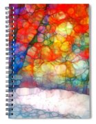 The Bench At First Snow Spiral Notebook