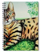The Bengal Spiral Notebook