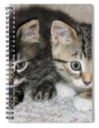 The Best Buddies Spiral Notebook