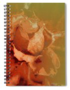 The Best Days Are Over Spiral Notebook