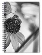 The Best Gardener - Bw Spiral Notebook