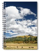 The Big Picture Spiral Notebook