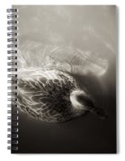The Bird And The Fish Spiral Notebook