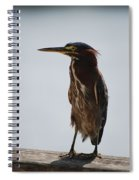 The Bird Spiral Notebook