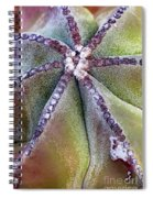 The Bishop's Cap Spiral Notebook