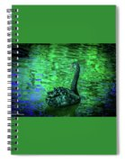 The Black Swan Spiral Notebook