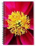 The Blaze Spiral Notebook