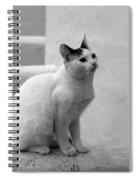 The Blond 3 Spiral Notebook