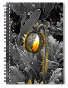 The Bloom Within Spiral Notebook