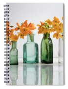 the Blooming yellow Ornithogalum Dubium in a transparent bottle instead vase Spiral Notebook