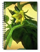 The Blossom To Become A Fruit Spiral Notebook