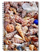 The Blue Bead Spiral Notebook