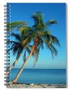 The Blue Lagoon Spiral Notebook