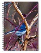The Blue Of Winter In The Woods Spiral Notebook