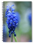 The Bluebells Of Destiny Spiral Notebook