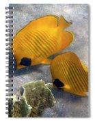 The Bluecheeked Butterflyfish Spiral Notebook