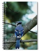 The Blues Song Spiral Notebook
