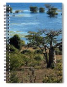 The Boabob Tree Spiral Notebook