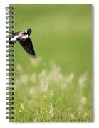 The Bobolink In Flight Spiral Notebook