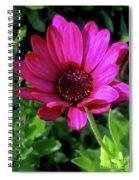 The Botanical Garden Zagreb Floral #9 Spiral Notebook