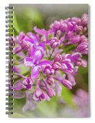 The Branch Of Lilac Spiral Notebook